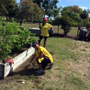 LDS Church volunteers in the gardens, April 14th 2018