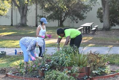 Volunteers working in the children's garden at Lakes Park