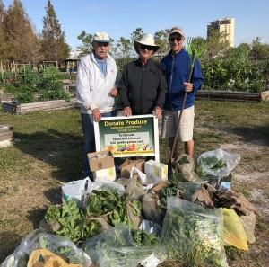 Lakes Park Community Garden harvest for January 15th, 2019
