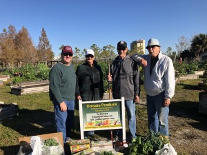 """A"" team members bring their ""A"" game for a cold morning's harvest - includes Bill Johnson, Dorothea McLaughlin, Jim Dubyak, Doc Johnson, Norm Smith & Jan Johnson"