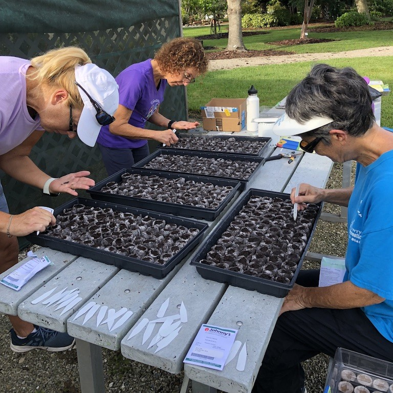 Community Garden Steering Committee - Nancy Sanders, Linda Sapp, and Jan Johnson - carefully planting seeds for the new Community Garden growing season.