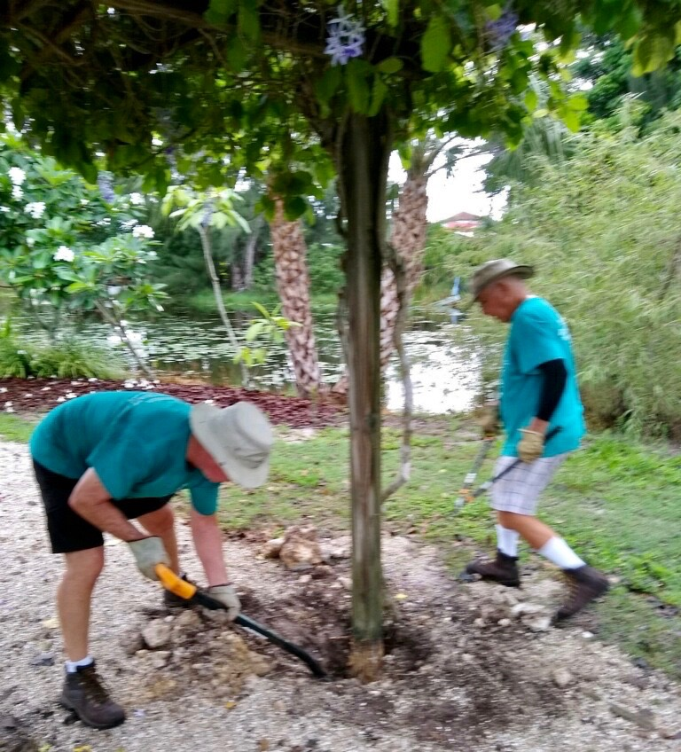 Volunteers work to replace the trellis in the Fragrance Garden