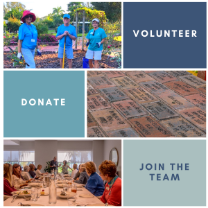 Get involved - support Lakes Park! Volunteer, donate, join the team